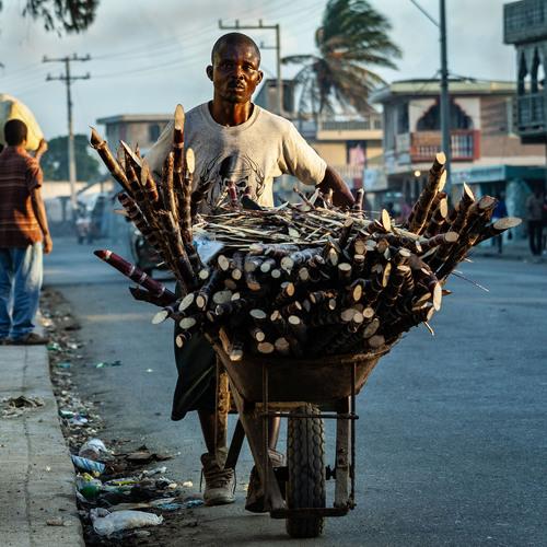 Haïtien transportant du bois