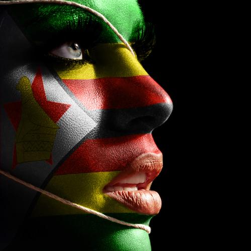 Shona, langue du Zimbabwe