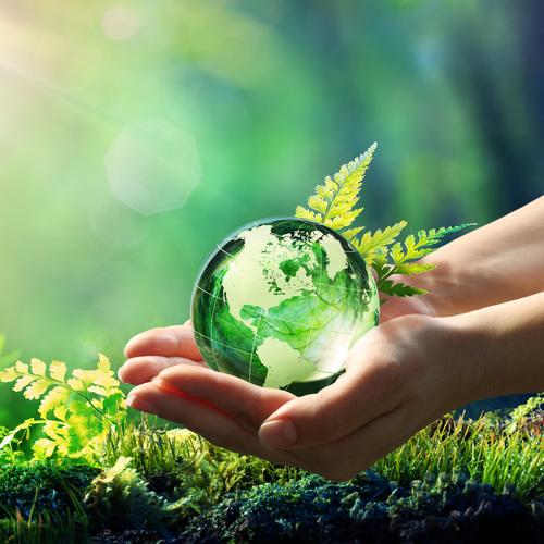 Le vert, symbole de l'écologie